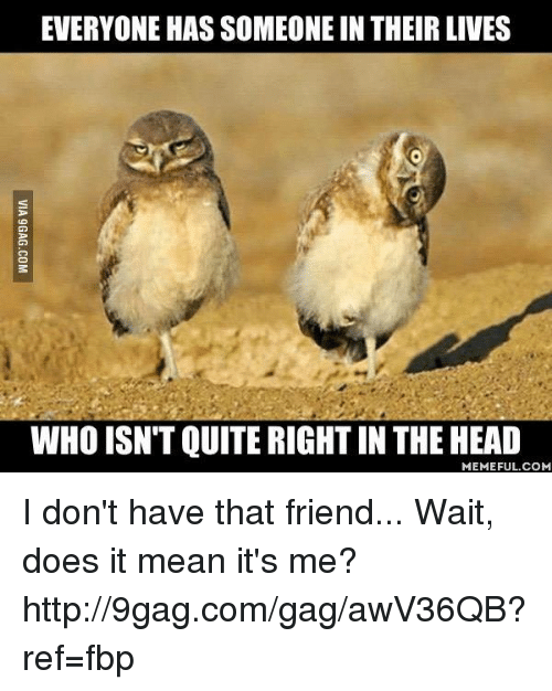 9gag, Dank, and Doe: EVERYONE HAS SOMEONE IN THEIR LIVES  WHO ISN'T QUITERIGHTIN THE HEAD  MEMEFUL COM I don't have that friend... Wait, does it mean it's me? http://9gag.com/gag/awV36QB?ref=fbp