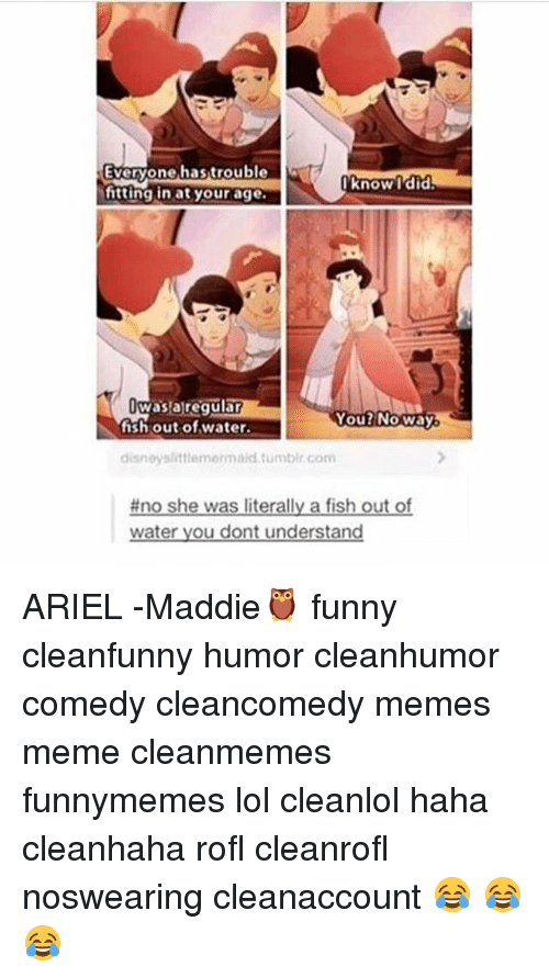 Ariel, Funny, and Lol: Everyone hastrouble  Everyone,hastrouble  know l'did  Know Tdid  itting in at your age  wasaregulan  fish out of water.  You2NOWay  disneyslittiemermaid tumbir.com  #no she was literally a fish out of  water you dont understand ARIEL -Maddie🦉 funny cleanfunny humor cleanhumor comedy cleancomedy memes meme cleanmemes funnymemes lol cleanlol haha cleanhaha rofl cleanrofl noswearing cleanaccount 😂 😂😂