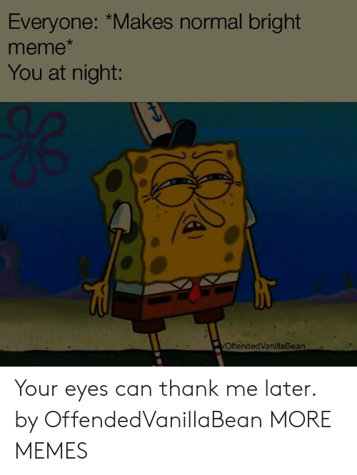 Dank, Meme, and Memes: Everyone: *Makes normal bright  meme  You at night:  OffendedVanillaBean Your eyes can thank me later. by OffendedVanillaBean MORE MEMES