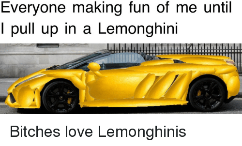 Love, Bitches Love, and Fun: Everyone making fun of me until  l pull up in a Lemonghini Bitches love Lemonghinis