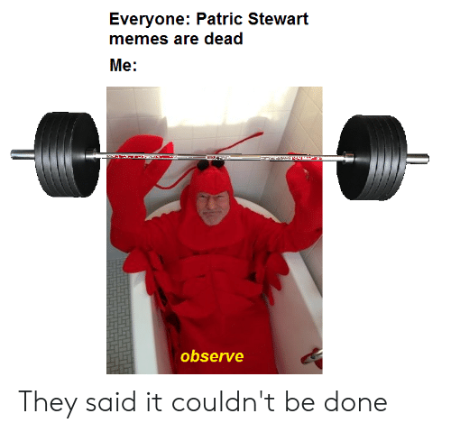 Everyone Patric Stewart Memes Are Dead Me Observe They Said