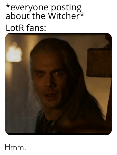 Everyone Posting About The Witcher Lotr Fans Hmm Witcher