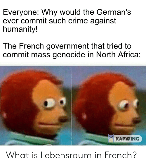 Africa, Crime, and History: Everyone: Why would the German's  ever commit such crime against  humanity!  The French government that tried to  commit mass genocide in North Africa:  KAPWING What is Lebensraum in French?