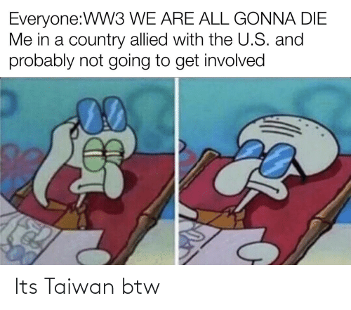 Dank Memes, Taiwan, and Ww3: Everyone:WW3 WE ARE ALL GONNA DIE  Me in a country allied with the U.S. and  probably not going to get involved Its Taiwan btw