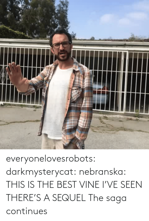 Tumblr, Vine, and Best: everyonelovesrobots:  darkmysterycat:  nebranska:  THIS IS THE BEST VINE I'VE SEEN  THERE'S A SEQUEL   The saga continues
