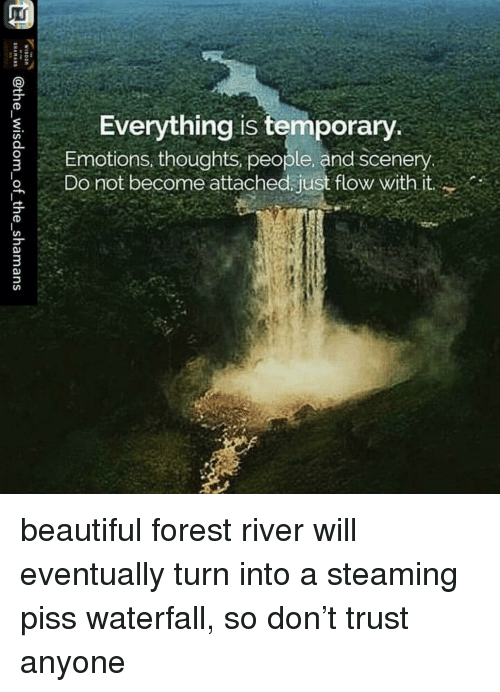 Beautiful, Im 14 & This Is Deep, and Forest: Everything is temporary  SEmotions, thoughts, people, and scenery  Do not become attached just flow with it