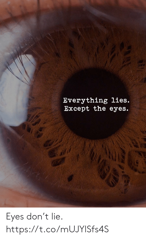 Don, Lie, and Lies: Everything lies.  Except the eyes.  GE Eyes don't lie. https://t.co/mUJYlSfs4S