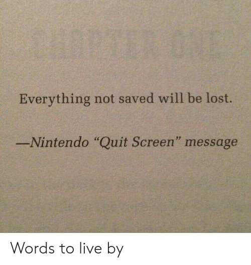 "Nintendo, Lost, and Live: Everything not saved will be lost.  Nintendo ""Quit Screen"" message Words to live by"