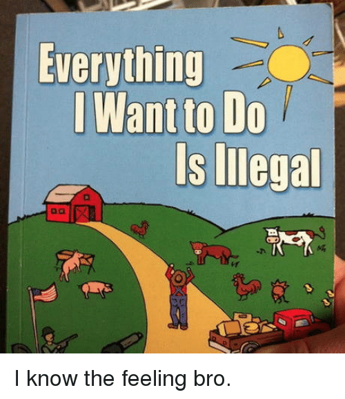Bro, I Know, and Everything: Everything  Want to Do  s Illegal  -h I know the feeling bro.