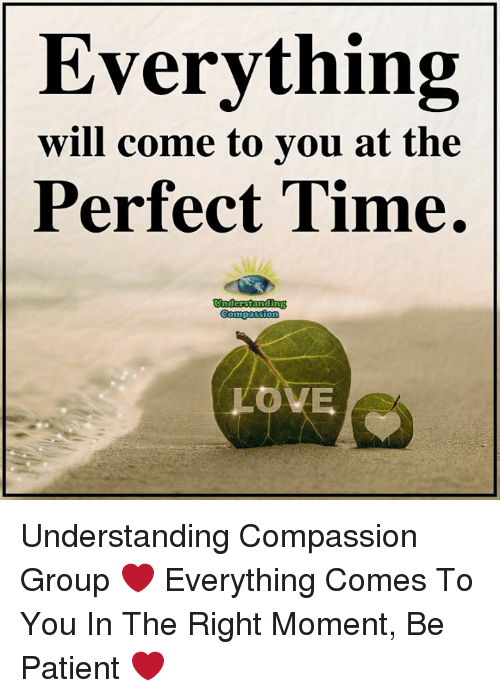 Love, Memes, and Patient: Everything  will come to you at the  Perfect Time.  LOVE Understanding Compassion Group ❤️  Everything Comes To You In The Right Moment, Be Patient ❤️