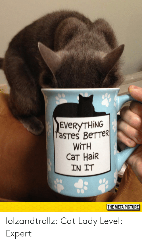 Tumblr, Blog, and Hair: EVeRYTHİNG  WITH  CaT Hair  IN IT  THE META PICTURE lolzandtrollz:  Cat Lady Level: Expert