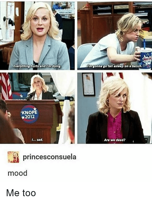 Fall, Memes, and Mood: Everythinghurts and im dying  mconna go fall asleep on a bench  KNOPE  ★2012  I... sad.  Are we dead?.  princesconsuela  mood Me too