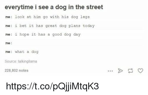 I Bet, Good, and Today: everytime i see a dog in the street  me: look at him go with his dog legs  me: i bet it has great dog plans today  me: i hope it has a good dog day  me  me: what a dog  Source: talkingllama  228,802 notes https://t.co/pQjjiMtqK3