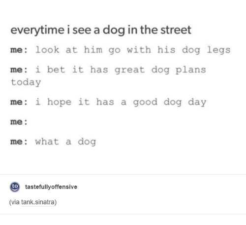 Dank, Dogs, and I Bet: everytime i see adog in the street  me look at him go with his dog legs  me: i bet it has great dog plans  today  me: i hope it has a good dog day  me  me: what a dog  to  tastefully offensive  (via tank.sinatra)
