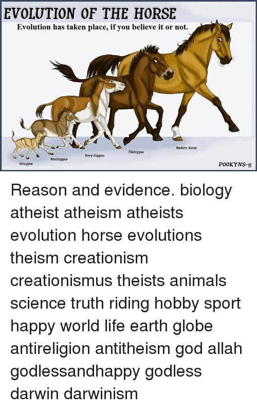 evolutions vs creationism Scientists are often challenged about their 'belief' in evolution many creationists  try to convince people that evolution is more of a 'faith-based'.
