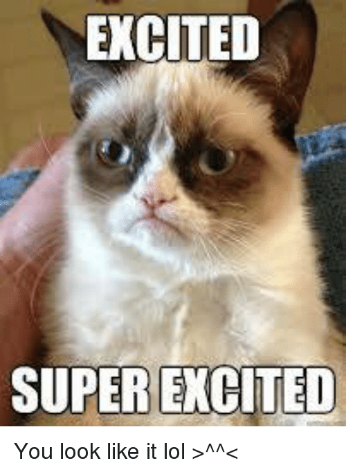 Grumpy Cat Excited Meme