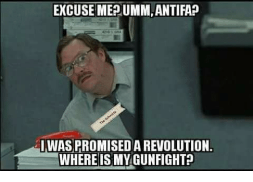 Memes, Revolution, and 🤖: EXCUSE MEPUMM,ANTIFAP  IWAS PROMISED A REVOLUTION.  WHEREIS MYGUNFIGHT?