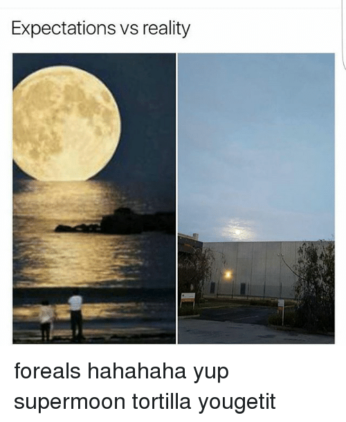 expectations vs reality 0 foreals hahahaha yup supermoon tortilla yougetit 23810298 ✅ 25 best memes about vs reality vs reality memes,Tortilla Moon Meme
