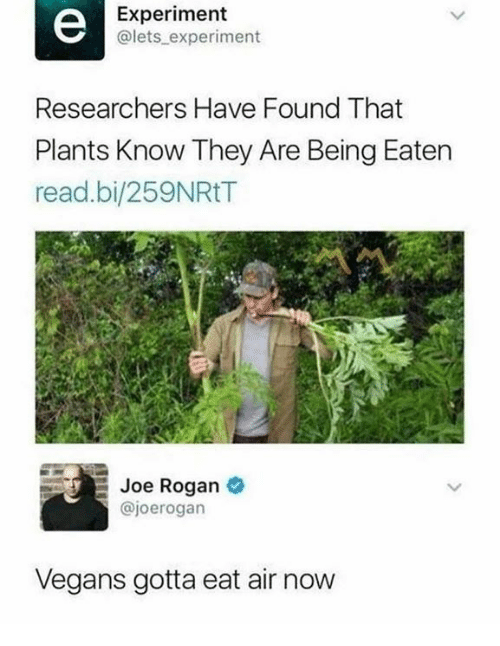 Dank, Joe Rogan, and 🤖: Experiment  @lets experiment  Researchers Have Found That  Plants Know They Are Being Eaten  read.bi/259NRtT  Joe Rogan *  @joerogarn  Vegans gotta eat air now