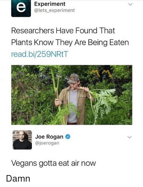 Joe Rogan, Memes, and 🤖: Experiment  @lets experiment  Researchers Have Found That  Plants Know They Are Being Eaten  read.bi/259NRtT  Joe Rogan  @joerogan  Vegans gotta eat air now Damn