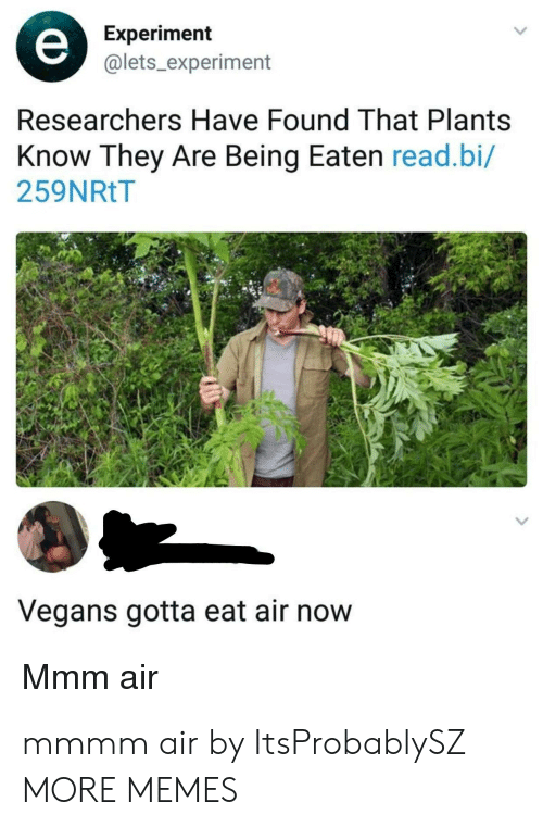 Dank, Memes, and Target: Experiment  @lets_experiment  Researchers Have Found That Plants  Know They Are Being Eaten read.bi/  259NRtT  Vegans gotta eat air now  Mmm air mmmm air by ItsProbablySZ MORE MEMES
