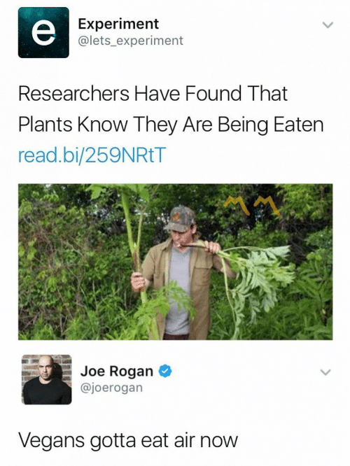 Joe Rogan, Air, and Joe: Experiment  @lets_experiment  Researchers Have Found That  Plants Know They Are Being Eaten  read.bi/259NRtT  Joe Rogan *  @joerogan  Vegans gotta eat air now