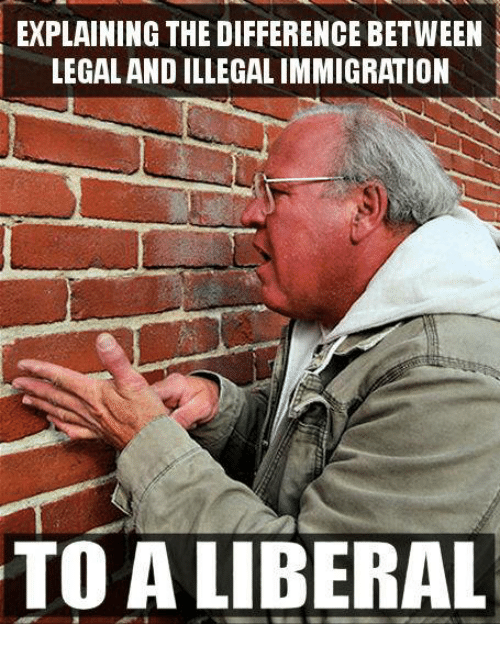 Immigration, Liberal, and Illegal Immigration: EXPLAINING THE DIFFERENCE BETWEEN  LEGAL AND ILLEGAL IMMIGRATION  TO A LIBERAL