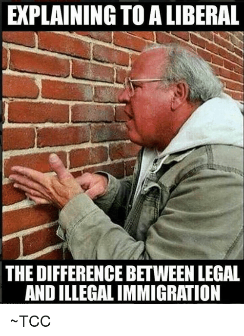 explaining to a liberal the difference between legal and illegal 27608901 explaining to a liberal the difference between legal and illegal