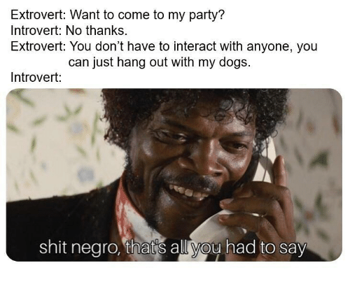Dogs, Introvert, and Party: Extrovert: Want to come to my party?  Introvert: No thanks.  Extrovert: You don't have to interact with anyone, you  can just hang out with my dogs.  Introvert:  shit negro, thats all you had to say