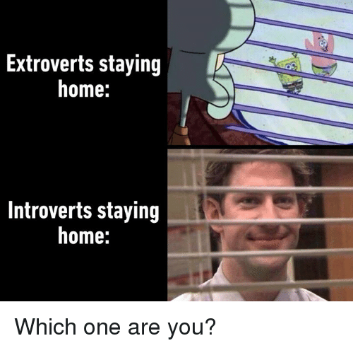 Dank, Home, and 🤖: Extroverts staying  home:  Introverts staying  home: Which one are you?