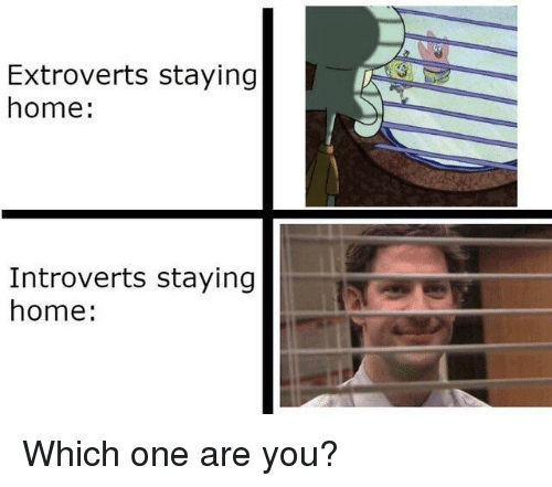 Home, One, and You: Extroverts staying  home:  Introverts staying  home: Which one are you?
