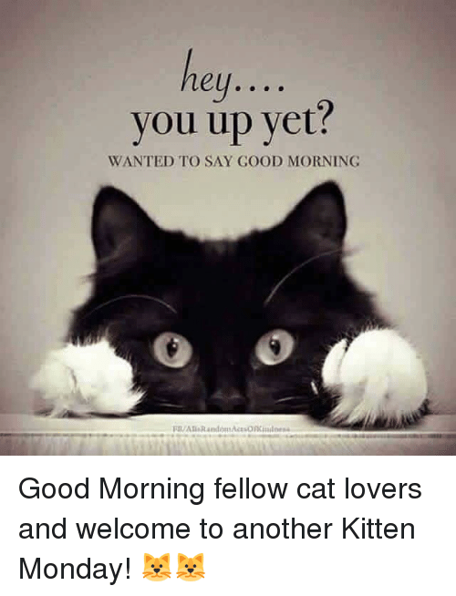 Ey You Up Yet Wanted To Say Good Morning Act Good Morning Fellow