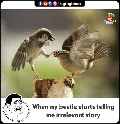 Indianpeoplefacebook, Story, and Laughing: f LaughingColours  LAUGHING  Colours  When my bestie starts telling  me irrelevant story