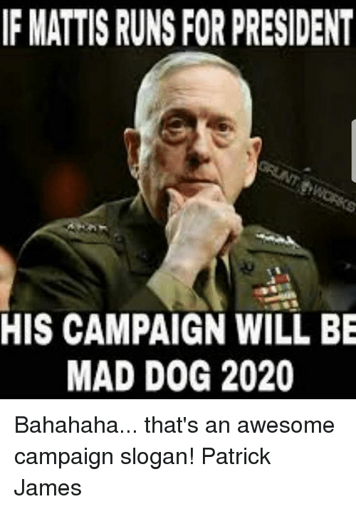 Memes, Awesome, and Mad: F MATTIS RUNS FOR PRESIDENT  HIS CAMPAIGN WILL BE  MAD DOG 2020 Bahahaha... that's an awesome campaign slogan!   Patrick James