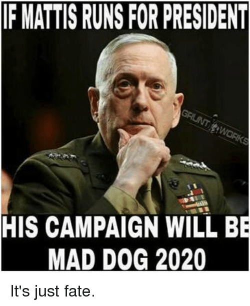 f mattis runs for president his campaign will be mad 8693235 25 best mad dog 2020 memes mad dogging memes, mattie memes, for
