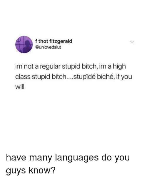 Bitch, Thot, and Girl Memes: f thot fitzgerald  @unlovedslut  im not a regular stupid bitch, im a high  class stupid bitch....stupidé biché, if you  will have many languages do you guys know?