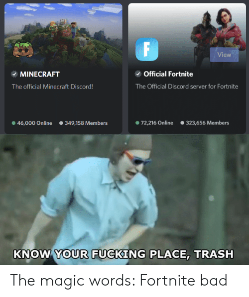 F View Official Fortnite MINECRAFT the Official Discord