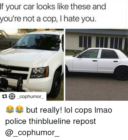 Memes, Police, and 🤖: f your car looks like these and  you're not a cop, I hate you  tu -cop humor 😂😂 but really! lol cops lmao police thinblueline repost @_cophumor_