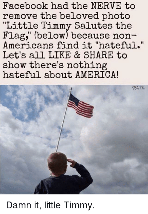 """America, Facebook, and Forwardsfromgrandma: Facebook had the NERVE to  remove the beloved photo  """"Little Timmy Salutes the  Flag, (below) because non-  mericans find it """"hateful.""""  Let's all LIKE & SHARE to  show there's nothing  hateful about AMERICA!  S84TK"""