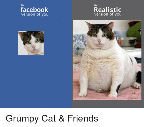 Memes, Grumpy Cat, and 🤖: facebook  version of you  Realistic  version of you Grumpy Cat & Friends