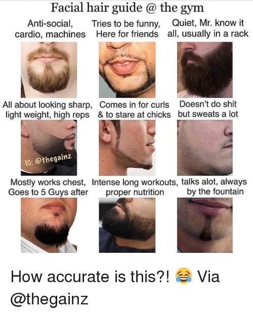 Friends, Funny, and Gym: Facial hair guide @ the gym  Anti-social, Tries to be funny, Quiet, Mr. know it  cardio, machines Here for friends all, usually in a rack  All about looking sharp, Comes in for curls Doesn't do shit  light weight, high reps & to stare at chicks but sweats a lot  Ie: @thegainz  Mostly works chest, Intense long workouts, talks alot, always  Goes to 5 Guvs after proper nutrition by the fountain How accurate is this?! 😂 Via @thegainz