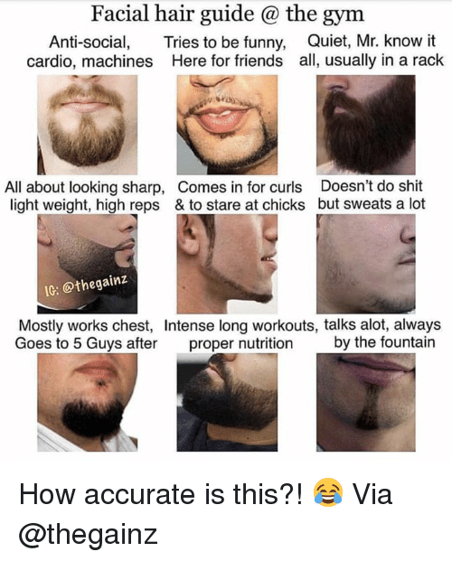 Friends, Funny, and Gym: Facial hair guide @ the gym  Anti-social, Tries to be funny, Quiet, Mr. know it  cardio, machines Here for friends all, usually in a rack  All about looking sharp, Comes in for curls Doesn't do shit  light weight, high reps & to stare at chicks but sweats a lot  IG: @thegainz  Mostly works chest, Intense long workouts, talks alot, always  Goes to 5 Guys after proper nutrition by the fountain How accurate is this?! 😂 Via @thegainz