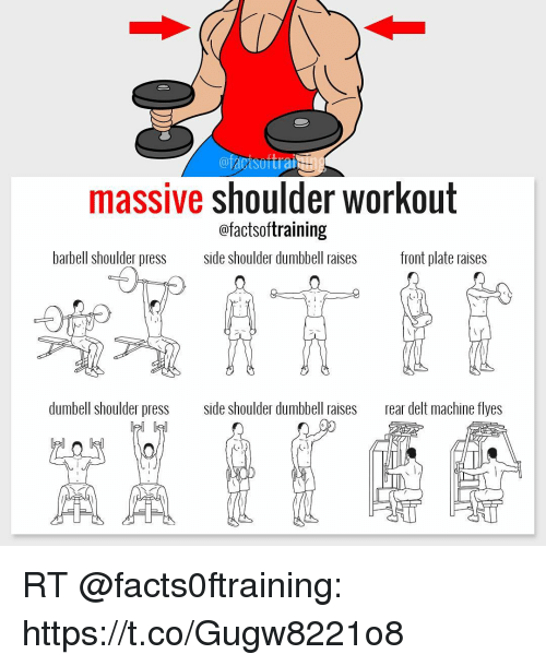 Elle Press And Machine Facisoftrai Massive Shoulder Workout Factsoftraining Barbell