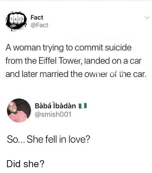 Love, Memes, and Eiffel Tower: FACIT Fact  @Fact  A woman trying to commit suicide  from the Eiffel Tower, landed on a car  and later married the owner of the car.  @smish001  So... She fell in love? Did she?