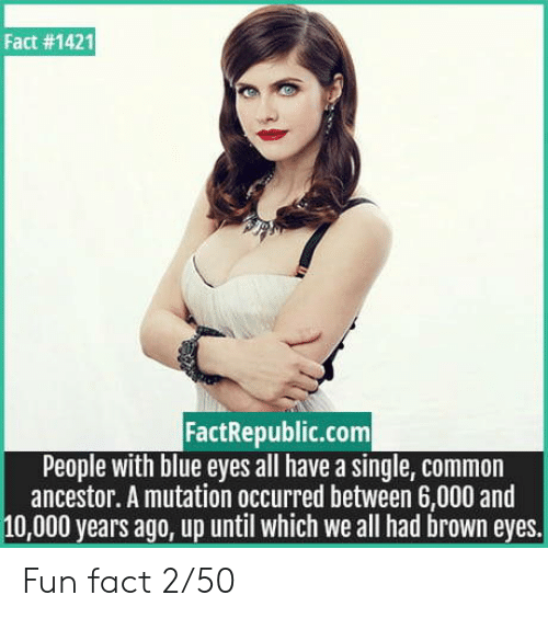 Blue, Common, and Single: Fact #1421  FactRepublic.com  People with blue eyes all have a single, common  ancestor. A mutation occurred between 6,000 and  10,000 years ago, up until which we all had brown eyes. Fun fact 2/50