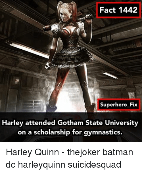 Memes, Gotham, and Gymnastics: Fact 1442  Superhero Fix  Harley attended Gotham State University  on a scholarship for gymnastics. Harley Quinn - thejoker batman dc harleyquinn suicidesquad