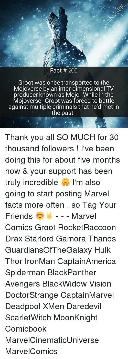 Memes, Daredevil, and Thanos: Fact 200  Groot was once transported to the  Mojoverse by an inter-dimensional TV  producer known as Mojo While in the  Mojoverse, Groot was forced to battle  against multiple criminals that he'd met in  the past Thank you all SO MUCH for 30 thousand followers ! I've been doing this for about five months now & your support has been truly incredible 🤗 I'm also going to start posting Marvel facts more often , so Tag Your Friends 😊🤘 - - - Marvel Comics Groot RocketRaccoon Drax Starlord Gamora Thanos GuardiansOfTheGalaxy Hulk Thor IronMan CaptainAmerica Spiderman BlackPanther Avengers BlackWidow Vision DoctorStrange CaptainMarvel Deadpool XMen Daredevil ScarletWitch MoonKnight Comicbook MarvelCinematicUniverse MarvelComics