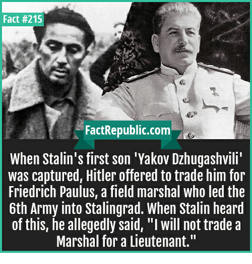 "how did stalins cunning bring him How did stalin become the leader of the ussr  stalin's personality –  ruthless, determined, cunning, treacherous, manipulative  ""one feature of the  history of old russia was the continual beatings she suffered because of her   for the gulag system and brought the red army to heal, but they did immense."