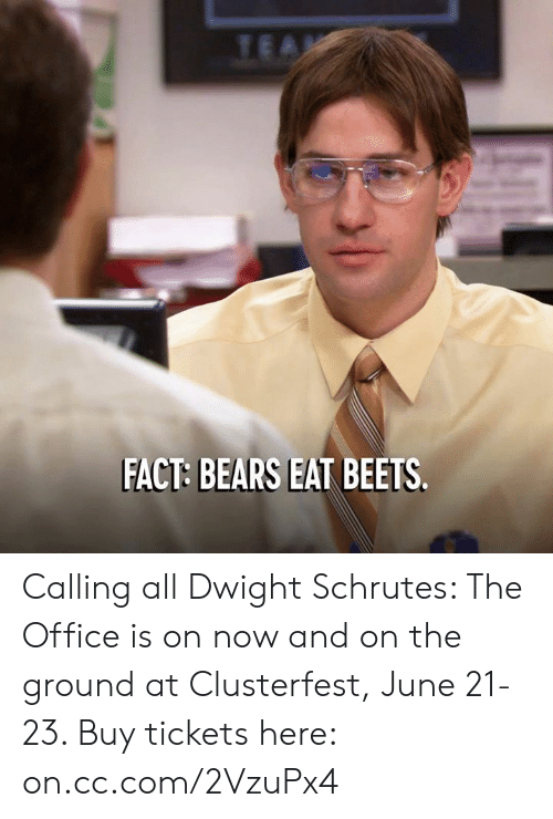 Dank, The Office, and Bears: FACT: BEARS EAT BEETS Calling all Dwight Schrutes: The Office is on now and on the ground at Clusterfest, June 21-23. Buy tickets here: on.cc.com/2VzuPx4
