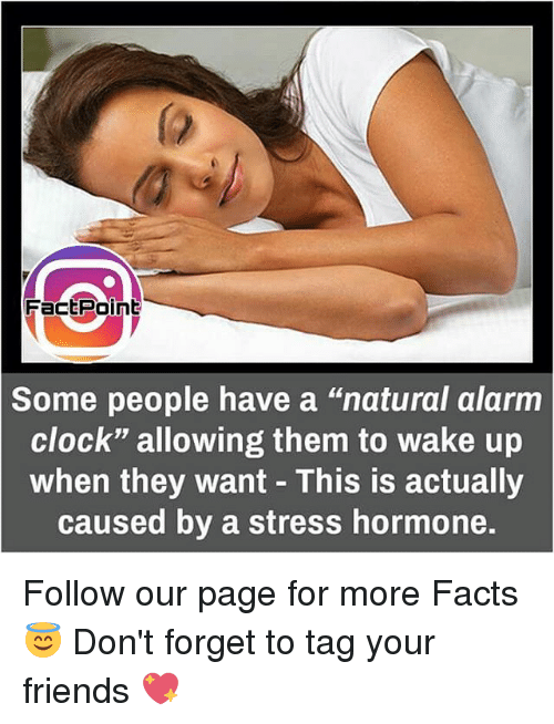 "Clock, Facts, and Memes: Fact Point  Some people have a ""natural alarm  Clock"" allowing them to wake up  when they want This is actually  caused by a stress hormone. Follow our page for more Facts 😇 Don't forget to tag your friends 💖"